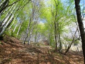 2018-04-25 monte Foldone da Catremerio (30)