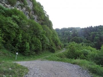 2021-06-05-monte-Guglielmo-11