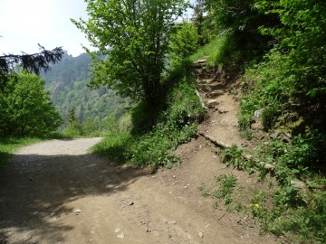 2021-06-05-monte-Guglielmo-15a