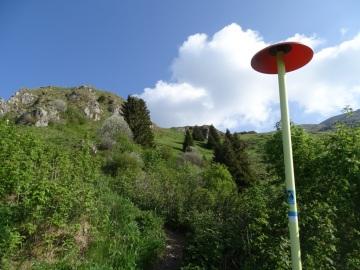 2021-06-05-monte-Guglielmo-26