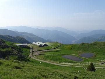 2021-06-05-monte-Guglielmo-30