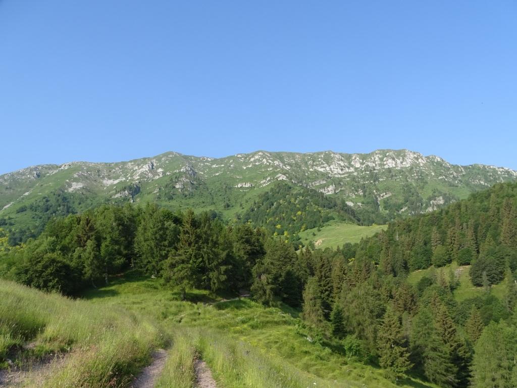 2020-06-24-monte-Guglielmo-12