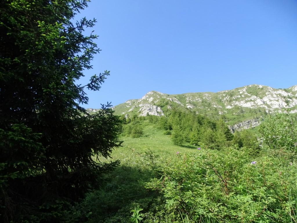 2020-06-24-monte-Guglielmo-21