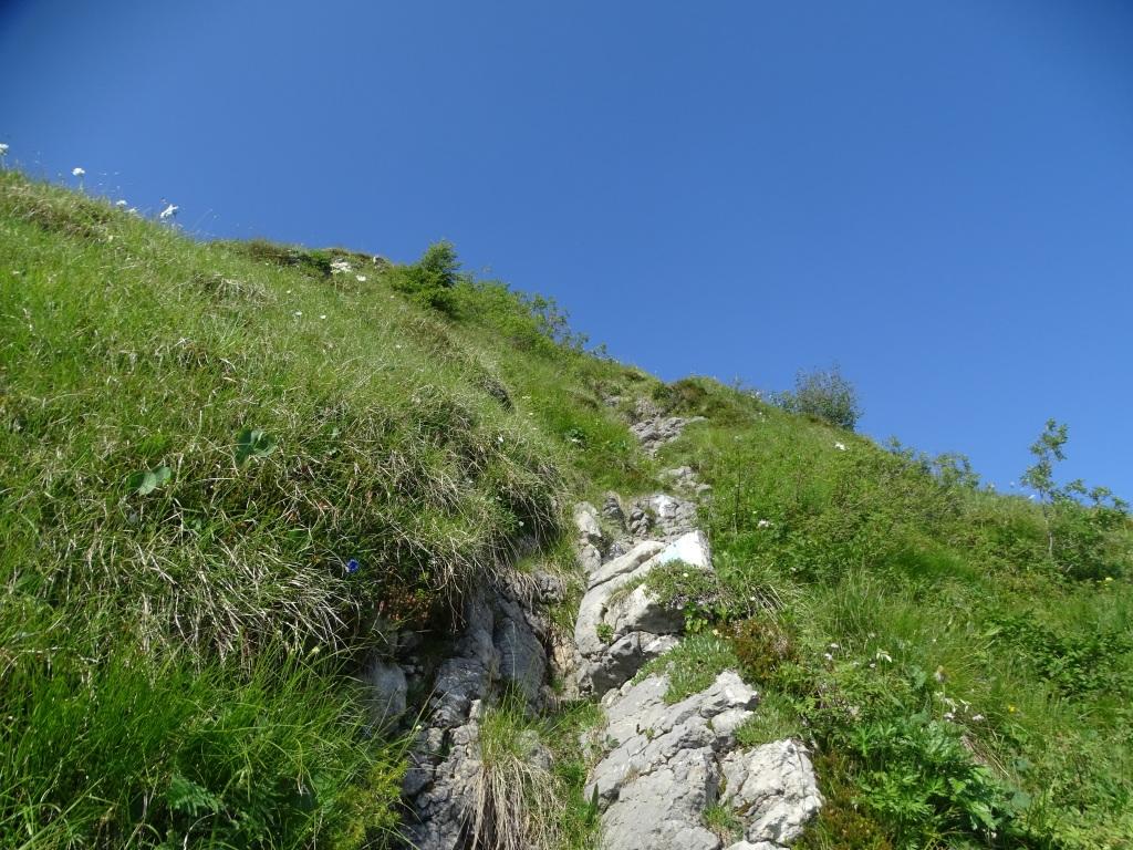 2020-06-24-monte-Guglielmo-27