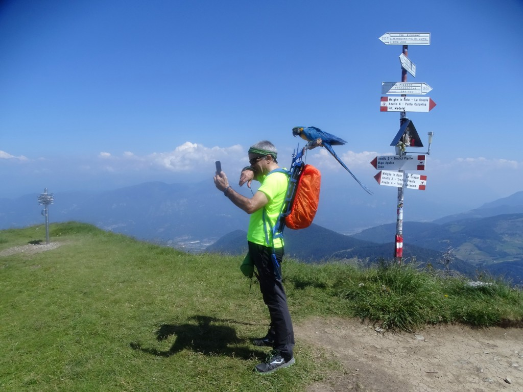 2020-06-24-monte-Guglielmo-45