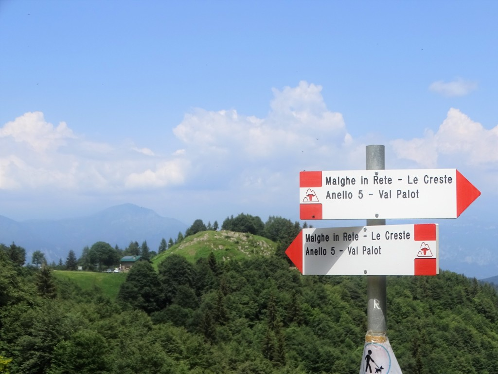 2020-06-24-monte-Guglielmo-55