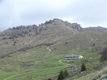 2021-05-05-Lividino-23