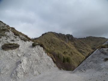 2021-05-05-Lividino-29
