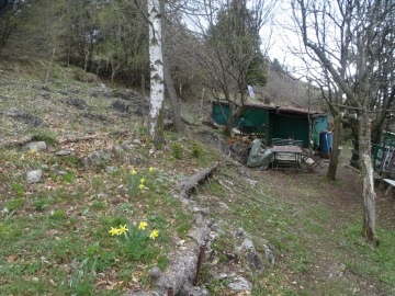 2021-05-05-Lividino-39