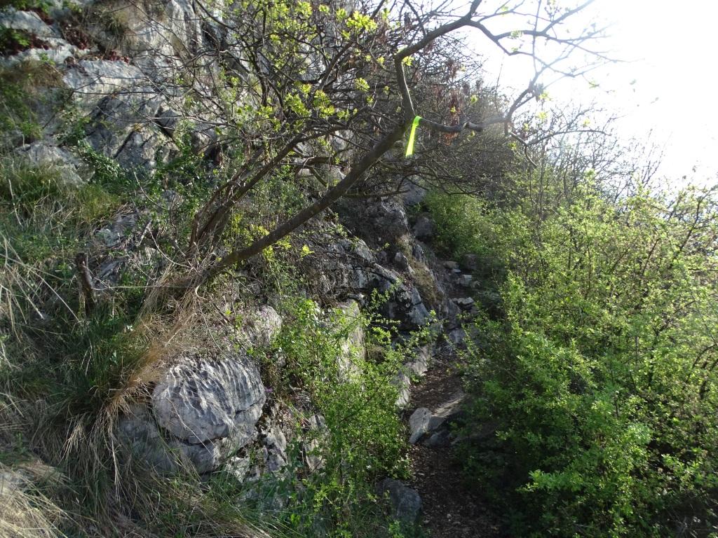 2021-04-03-monte-Predosa-30