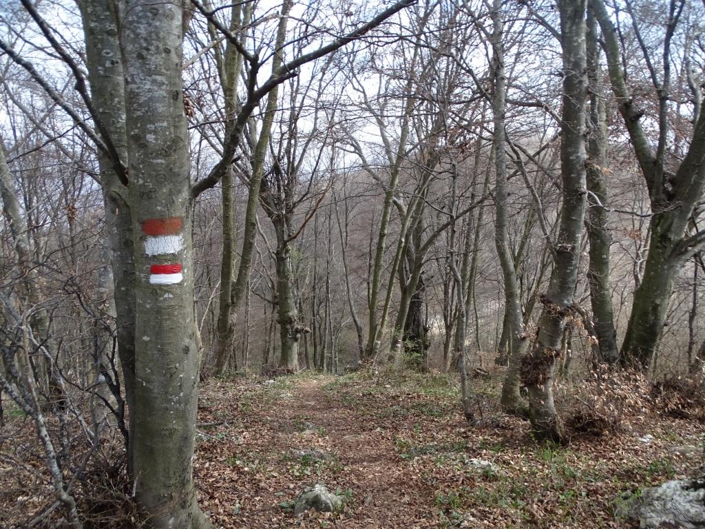 2021-04-03-monte-Predosa-59