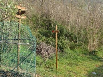 2021-04-03-monte-Predosa-10