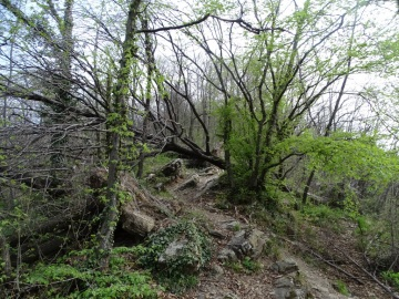 2021-04-03-monte-Predosa-44