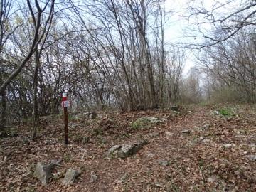 2021-04-03-monte-Predosa-58