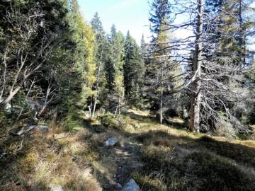 2019-10-13-monte-Serodoli-94