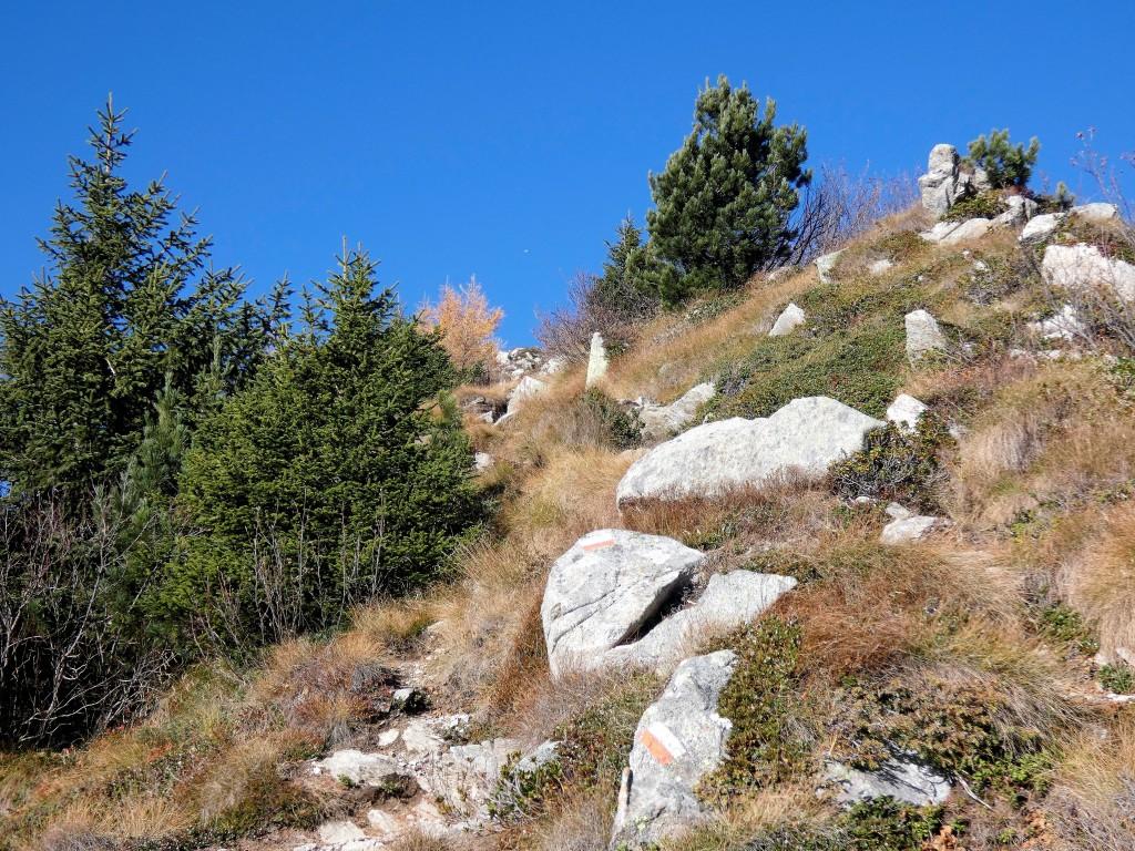 2019-10-27-monte-Zeledria-e-6-laghi-114