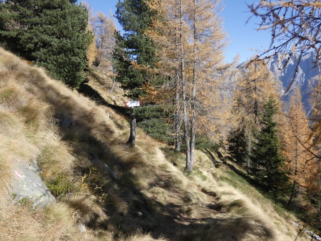 2019-10-27-monte-Zeledria-e-6-laghi-207