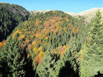 01 2012-10-20 Passo Omini e Timogno 002