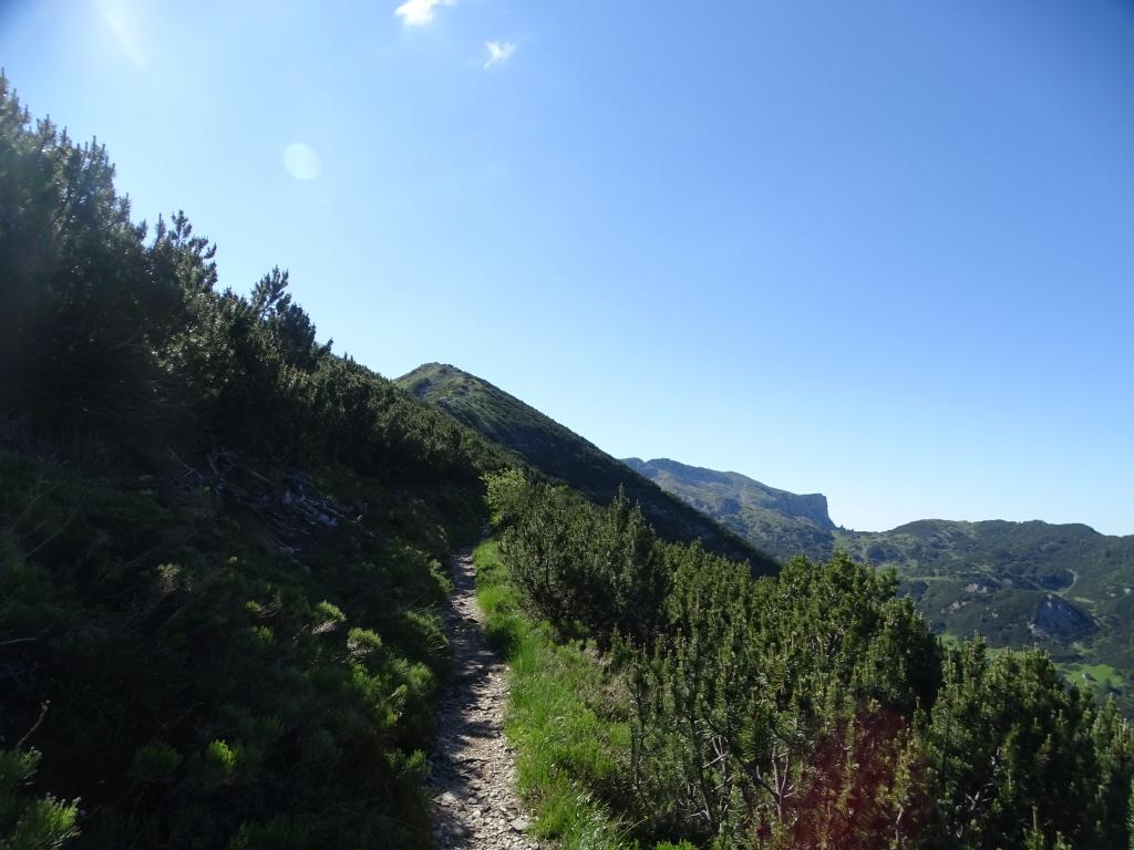 2018-06-27 Dente Austriaco (116)
