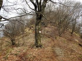 2018-04-08 Pizzo Cerro e Castel Regina 030