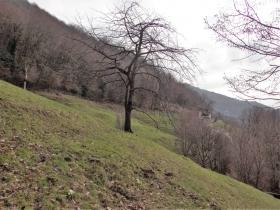2018-03-25 Valle del Giongo (29)