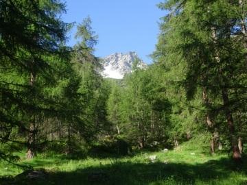 2020-06-28-valle-Monticelli-10