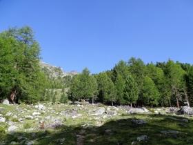 2017-08-03 Punta di Lasa Orgelspitze (13)