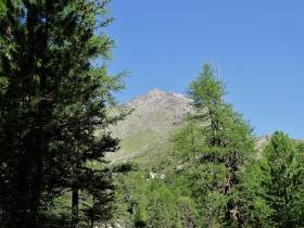 2017-08-03 Punta di Lasa Orgelspitze (14)