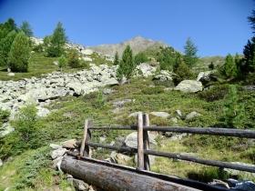 2017-08-03 Punta di Lasa Orgelspitze (17)