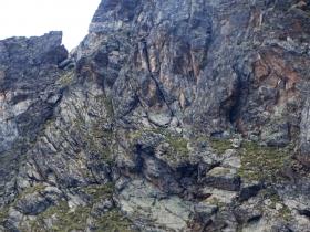2017-08-03 Punta di Lasa Orgelspitze (90)