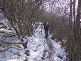 2018-02-04 Rif. Parafulmine da Barzizza di Gandino (113)