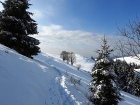 2018-02-04 Rif. Parafulmine da Barzizza di Gandino (135)