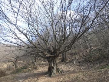 2021-03-23-S.Onofrio-41