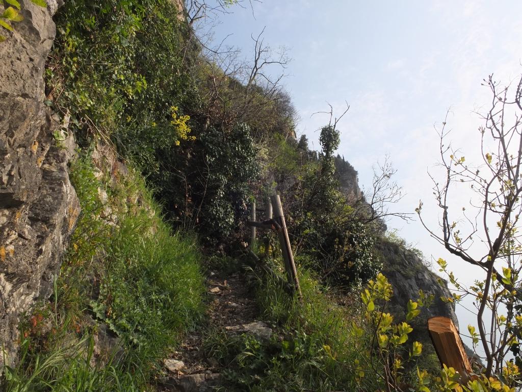 2014-04-02  salita alla Pieve Tremosine 069