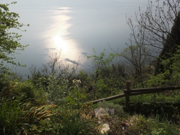2014-04-02  salita alla Pieve Tremosine 075