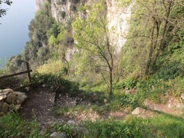 2014-04-02  salita alla Pieve Tremosine 091