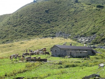 2021-08-11-Scoglio-di-Laione-e-Condino-64