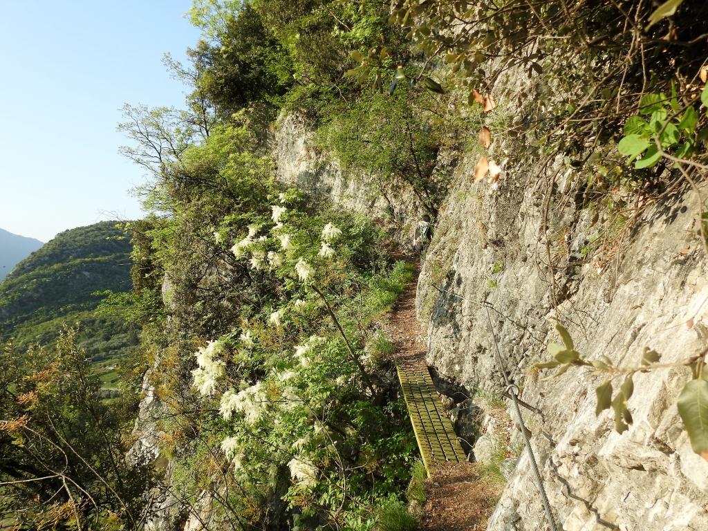 2018-04-22 sentiero degli Scaloni Dro Ceniga (112)