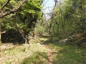 2018-04-22 sentiero degli Scaloni Dro Ceniga (159)