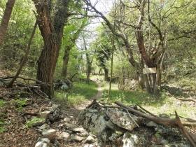2018-04-22 sentiero degli Scaloni Dro Ceniga (160)