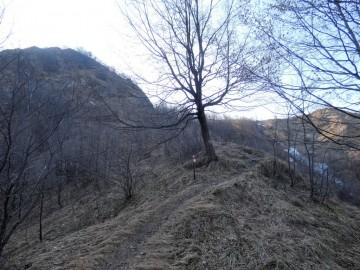 2021-03-07-monte-Sonclino-31