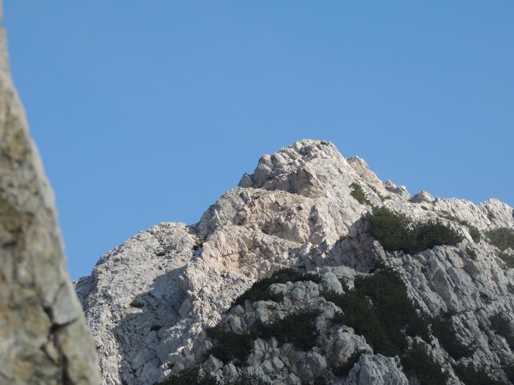 01 2012-06-24 cima valdritta baldo 048