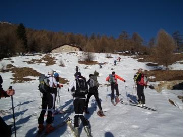 00 2011-03-06 cima Verde 019