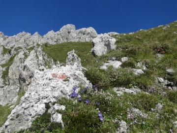 10 2011-07-31 Il Camino camuno 006