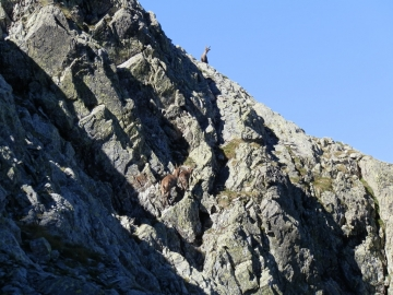 18 2012-08-07 monte Aga 009