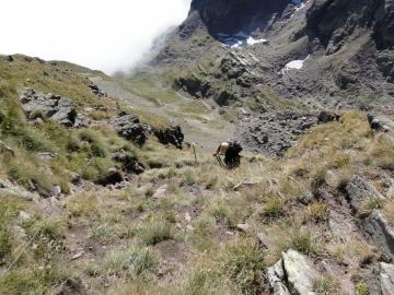 24 2010-09-12 Monte Pradella (2626mt.) 019