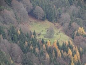 2016-11-20 monte Stigolo (29)