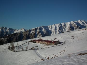 06 2011-01-15 Vaccaro 013