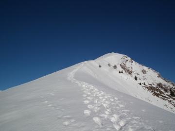 08 2011-01-15 Vaccaro 016