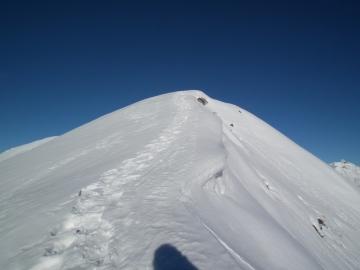 24 2011-01-15 Vaccaro 026